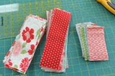 The jelly roll cut into 9 and 5 inch strips