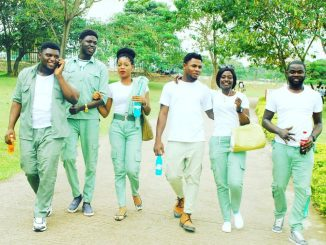 Business ideas for corps members