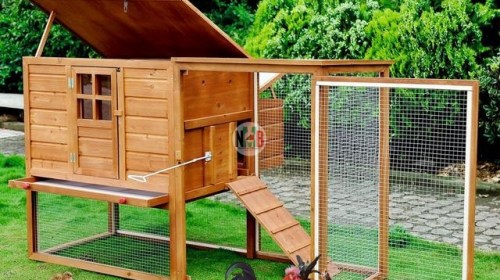 Poultry House Designs