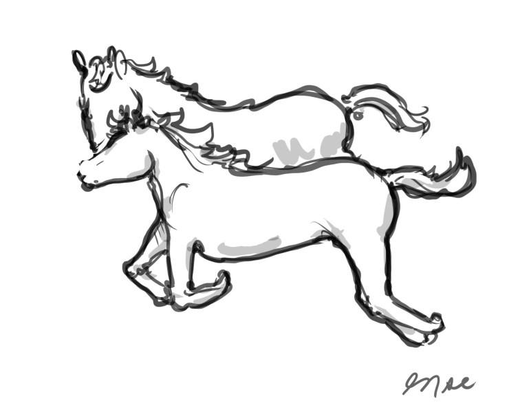 horse-sketch-2