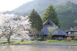 豊かな農村の風景