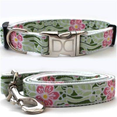 Maui Collar & Leash Set