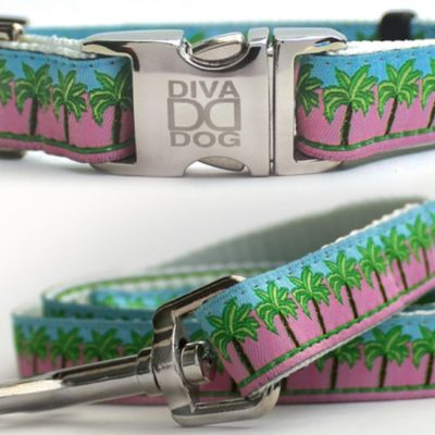 South Beach Collar & Leash Set