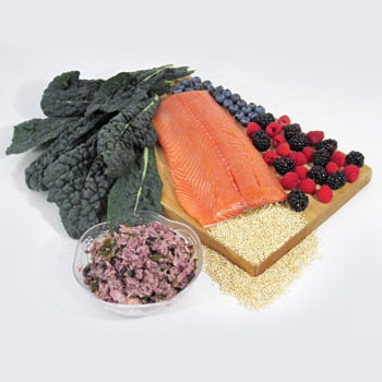 Wild Salmon Dog Food