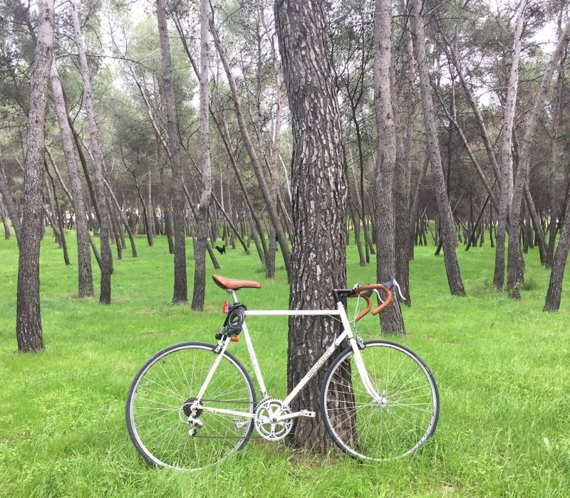 Cycling in Madrid  A Beginner s Guide - Naked MadridNaked Madrid 452de71c2