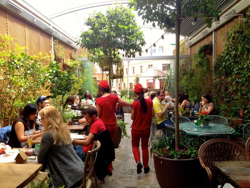 El Jardin Secreto De Salvador Bachiller A Secret Rooftop Paradise