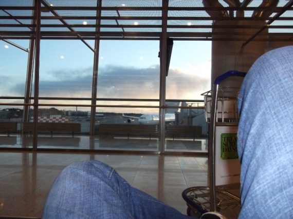 Relaxing and bird-watching, was all I did at Helsinki Vantaa.