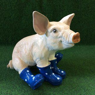 varken met laars zittend blauw