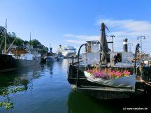 Blumen im Rettungsboot