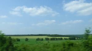 Landschaft mit Wiesen und Wäldern