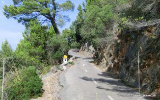 Strasse nach Valldemossa Port