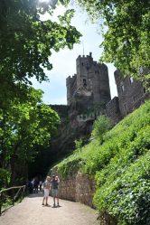 Pfad zur Burg Rheinstein