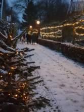 Spazieren im Schnee