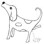 Hrdinný pes