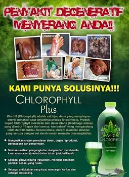 Cara & Aturan Pakai : Chlorophyll Plus 3 x 1 sdm,  Spirulina 3 x 2 kapsul sebelum makan, Nutriburst 2 x 1 scoop jam 10 pagi dan 15, Noni Plus 3 x 2 sdm , Garlic 2 x 2 tab setelah makan.