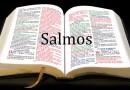LIVRO DOS SALMOS, O LIVRO MAIS LIDO DA BÍBLIA