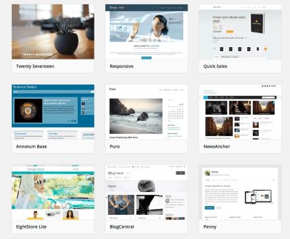 screenshot of theme repository