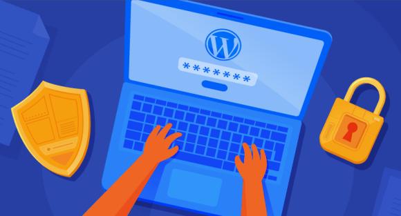 Typing password into WordPress site