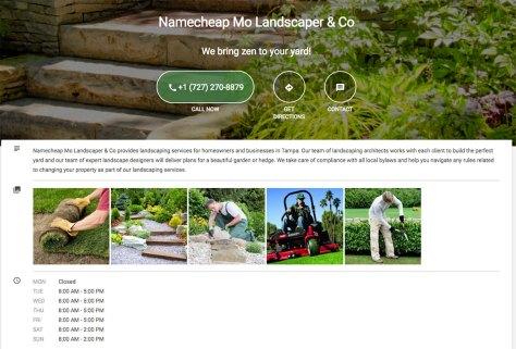 screenshot of business promoter website