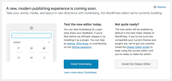screenshot of Gutenberg option in WordPress
