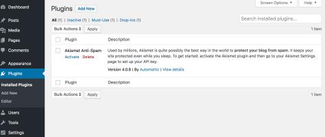 plugin screen in WordPress