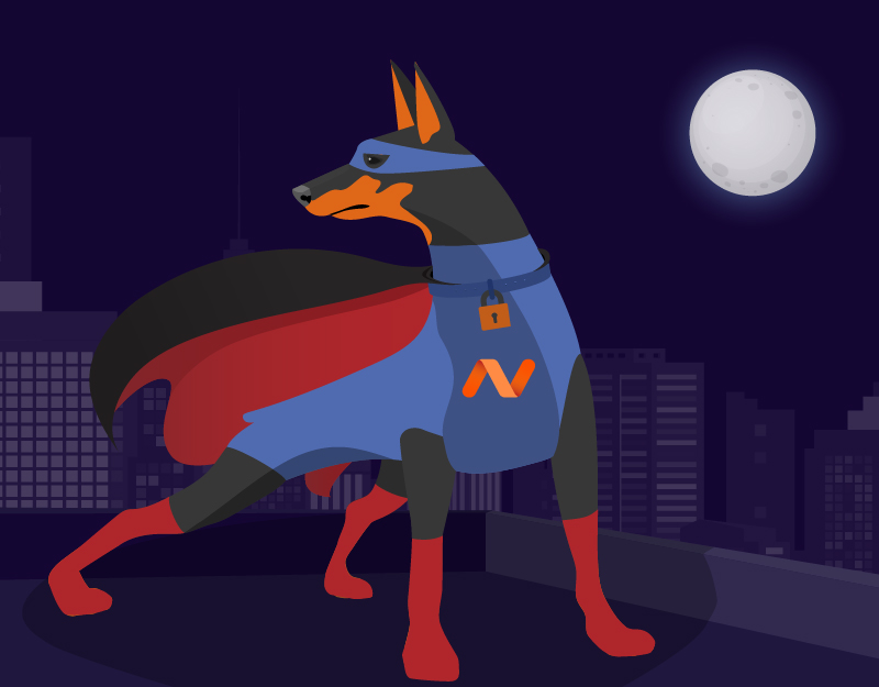 Hero image of Namecheap Keeps You Safe OnlineHow Gutenberg Will Revolutionize the Web