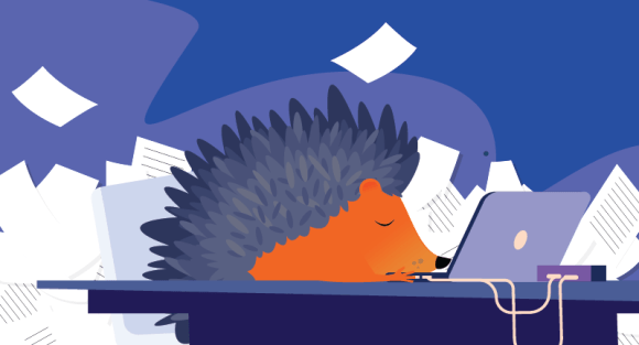 Hedgehog asleep at the laptop