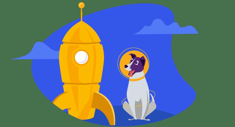 dog with rocket