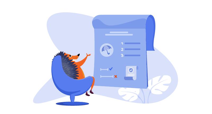 hedgehog in front of website plan