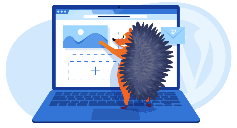 hedgehog building his website