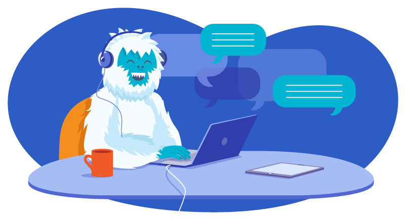 Yeti engaged in online chat with a customer
