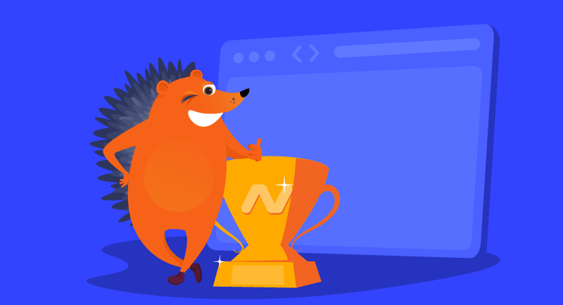Hero article of Namecheap champions privacy standards