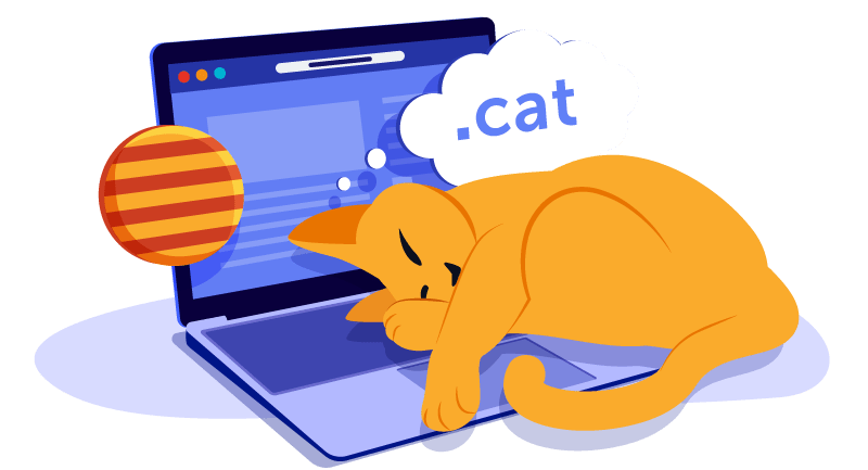 cat laying on laptop dreaming of domain