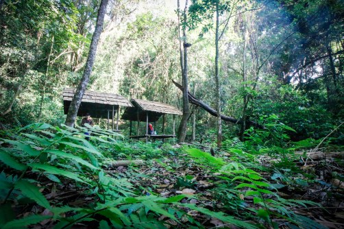 laos-trek-cloud-forest-huts