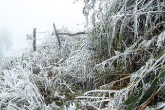 Houphan-NamEt-PhouLouey-cold-january-2016-11