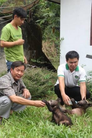 NEPL-NamNern-Free-bears-laos-4
