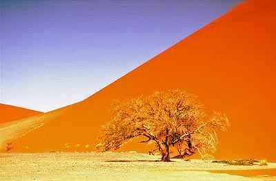 Dune 45 de Sesriem Sossusvlei - Namibie safari voyage sur mesure et groupe Namibie Botswana Voyage Namibie carte et prix