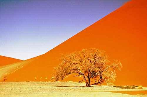 Dunes Sesriem Sossusvlei - Namibie safari voyage sur mesure et groupe Namibie Botswana Voyage Namibie carte et prix