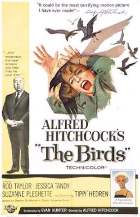 the birds, movie