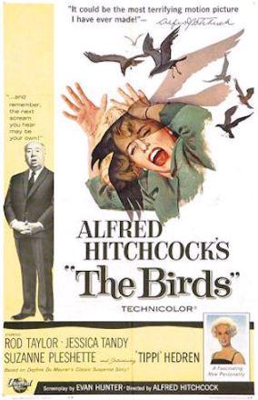 the birds, movie