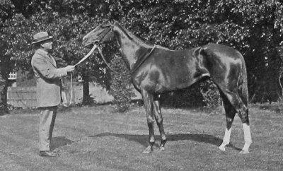 fifinella in 1916