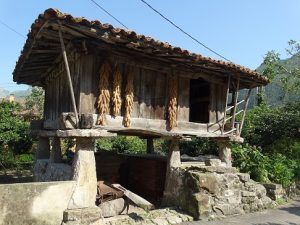 Drying shed on granite legs typical of Asturias in Spain