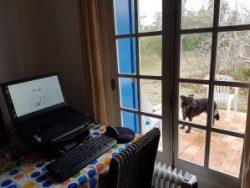 A laptop set up on a table near a window