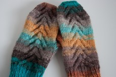 colourful_mitts-8245