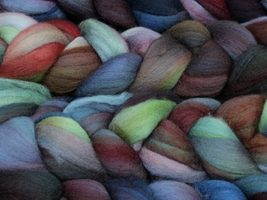 Malabrigo Nube Merino Wool Roving 139 Pocion