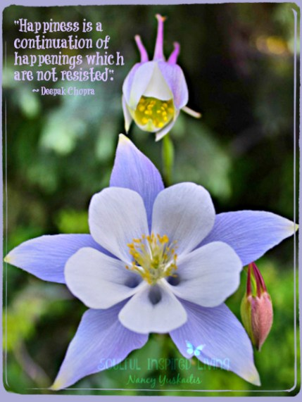 CO Columbine w.Buds Deepak Quote
