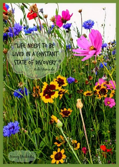 Wildflower garden- Quote