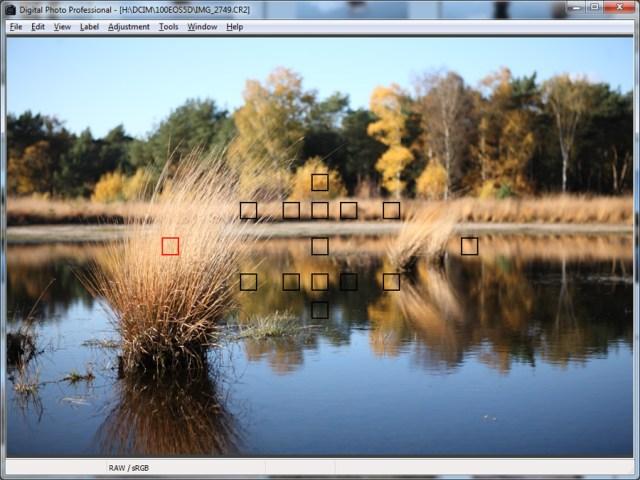 Het scherpstellen van een foto met een enkel scherpstelpunt
