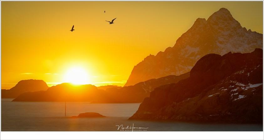 Zonsondergang in Svolvaer
