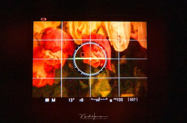 Het beeld in de zoeker laat zien of de belichting goed is, dankzij belichtingss simulatie